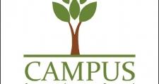 my logo 01