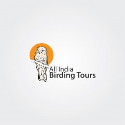 logo design company in kolkata